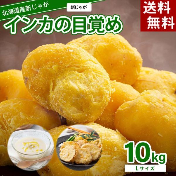 (送料無料 Lサイズ)北海道産じゃがいも インカのめざめ 大型 10kg(新じゃが インカのめざめ・芋)希少種のジャガイモです。グルメお取り寄せ