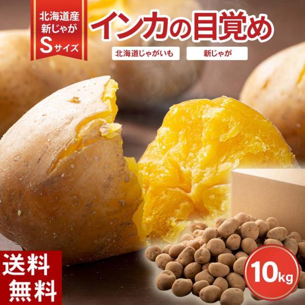 (送料無料 Sサイズ)北海道産じゃがいも インカのめざめ 小型 10kg(新じゃが インカのめざめ・芋)希少種のジャガイモです。グルメお取り寄せ