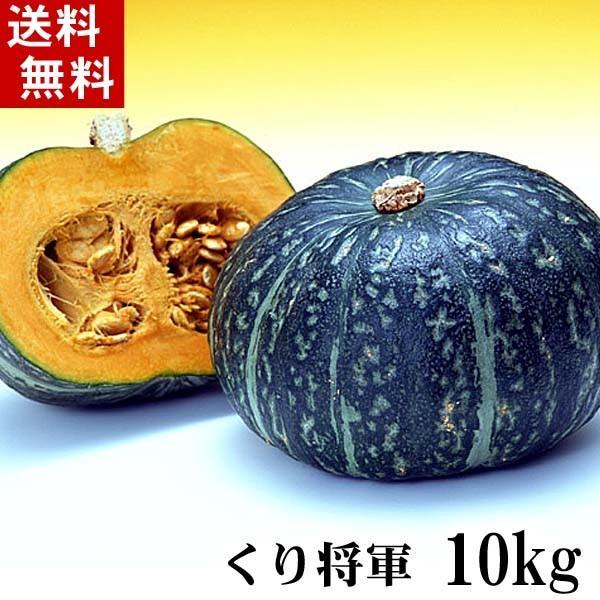 (送料無料)北海道産カボチャ 栗将軍 10kg(5〜7玉入り)粉質でホクホクな南瓜。北海道かぼちゃ野菜グルメお取り寄せ