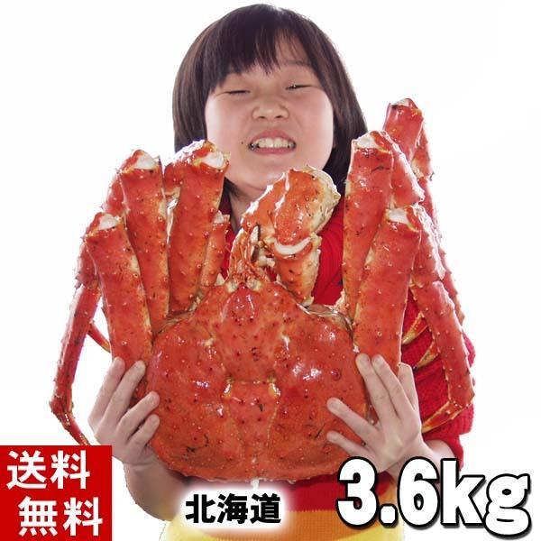 (送料無料) タラバガニ たらばがに 姿 3.6kg 特大 ボイル冷凍(北海道産) たらば蟹贈答用のカニ姿。(ギフト)
