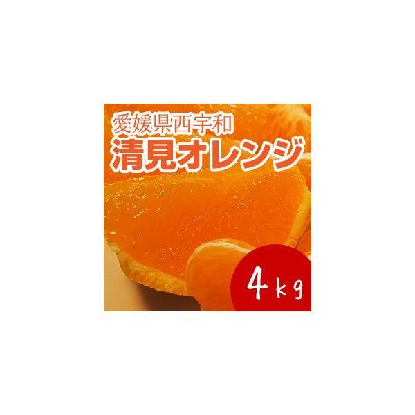 清見オレンジ4kg|kanjyukuya