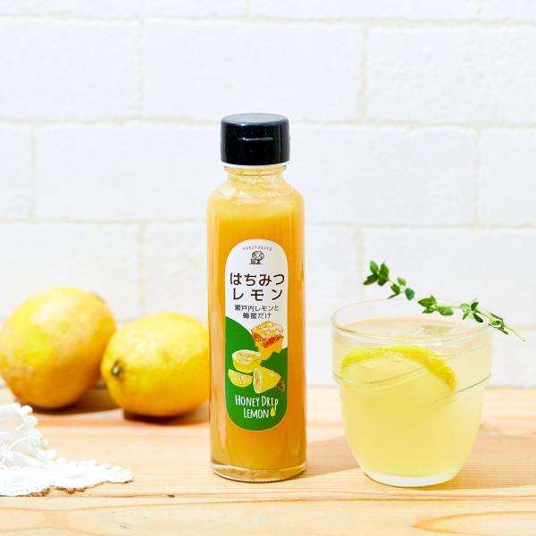 〔ギフト包装込〕はちみつレモンと蜂蜜50g×3本<みかん・春・ヘアリー>|kanjyukuya|02