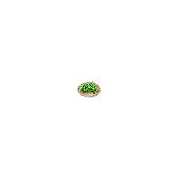 [冷]時価・青唐辛子1kg(辛い)-韓国産/韓国野菜/韓国食品/韓国市場|kankoku-ichiba|02