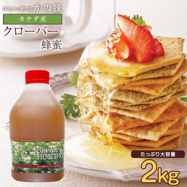 カナダ産 クローバー蜂蜜 2000g 2kg ポリ容器 完熟蜂蜜 非加熱 健康食品