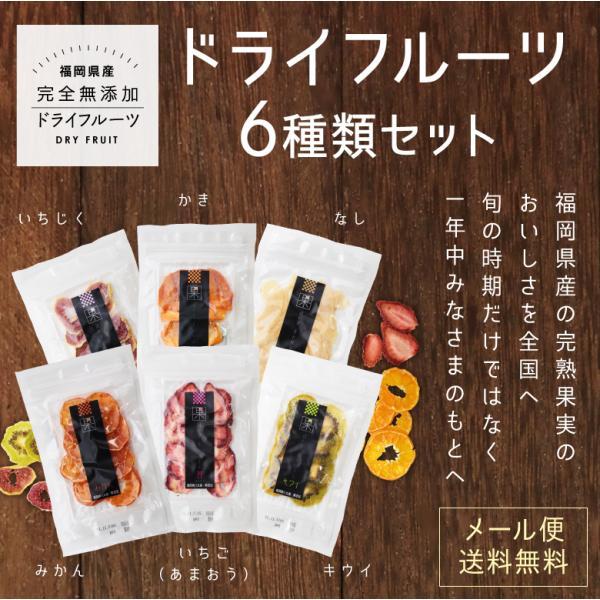ドライフルーツ 6種類 セット 各10g×6袋 ドライフルーツ 砂糖不使用 無添加 あまおう いちじく みかん メール便 送料無料 国産 はちみつ専門店 かの蜂