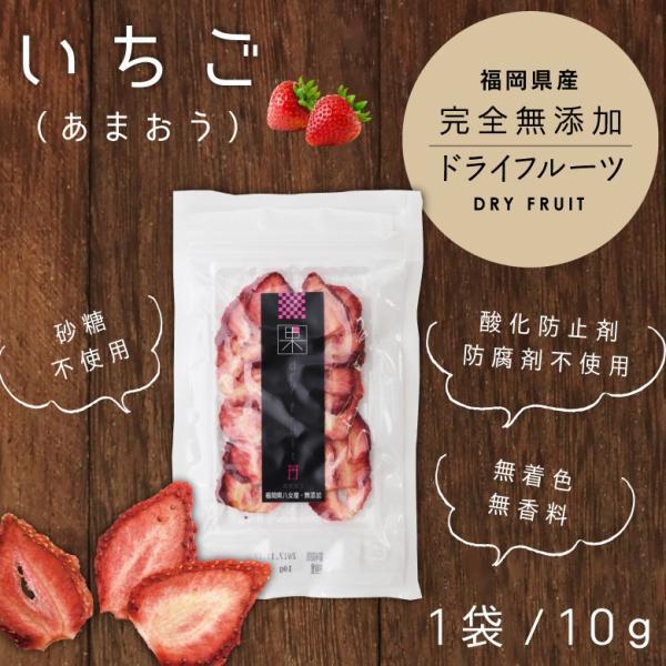 ドライフルーツいちご あまおう 10g ドライフルーツ 砂糖不使用 無添加 国産 福岡県産 あまおう はちみつ専門店 かの蜂