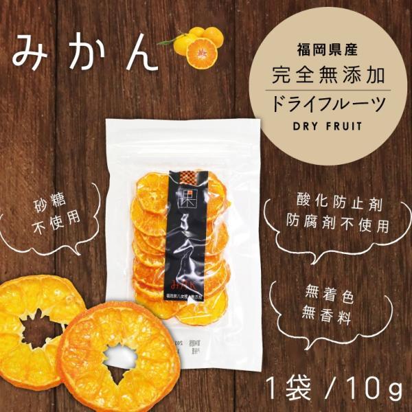 ドライフルーツ みかん 10g ドライフルーツ 砂糖不使用 無添加 国産 福岡県産 みかん はちみつ専門店 かの蜂