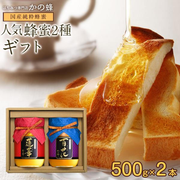 蜂蜜 ギフト 送料無料 国産蜂蜜ギフト500g×2本セット 蜂蜜専門店 かの蜂
