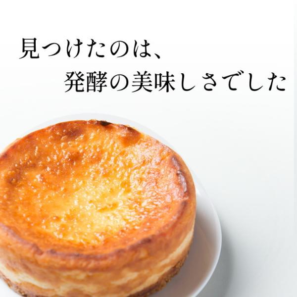 酒粕チーズケーキ 取り寄せ 夏ギフト お中元 スイーツ プレゼント 話題の発酵食品 酒粕 入り 濃厚 ベイクドチーズケーキ お取り寄せ ギフト 誕生日|kanoka-cake|02