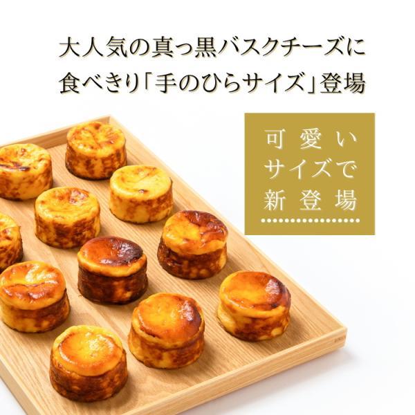 バスクチーズケーキ ミニ サイズ 4個 入り 夏ギフト お中元 プレゼント 大人気 真っ黒 チーズケーキ 食べきり お取り寄せ スイーツ ギフト 誕生日 kanoka-cake 02