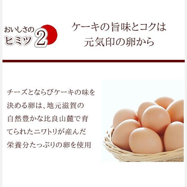 花 スイーツ 夏ギフト お中元 誕生日 お祝い プレゼント 記念日 フラワーギフト 豊潤 チーズケーキ 4号 と プリザードフラワー アレンジメント バースデーケーキ|kanoka-cake|07