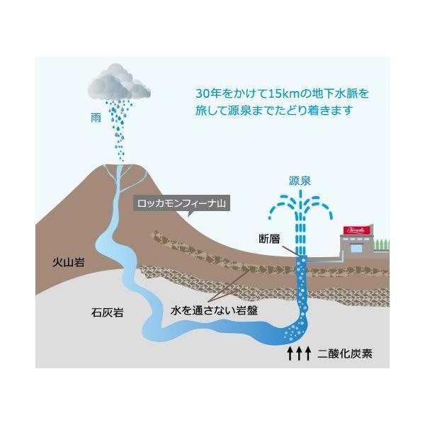 炭酸水 1l 12本セット 送料無料  一部地域を除く フェッラレッレ ナチュラルミネラルウォーター 1000ml×12本入 瓶 天然 スパークリング|kappa-chianti|04