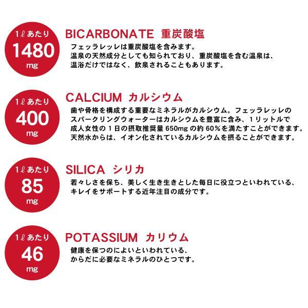 炭酸水 1l 12本セット 送料無料  一部地域を除く フェッラレッレ ナチュラルミネラルウォーター 1000ml×12本入 瓶 天然 スパークリング|kappa-chianti|05