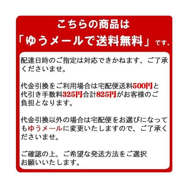 SDカード 64GB calss10 東芝 SDXC 超高速 100MB/s TOSHIBA プレミアム会員|karei|02