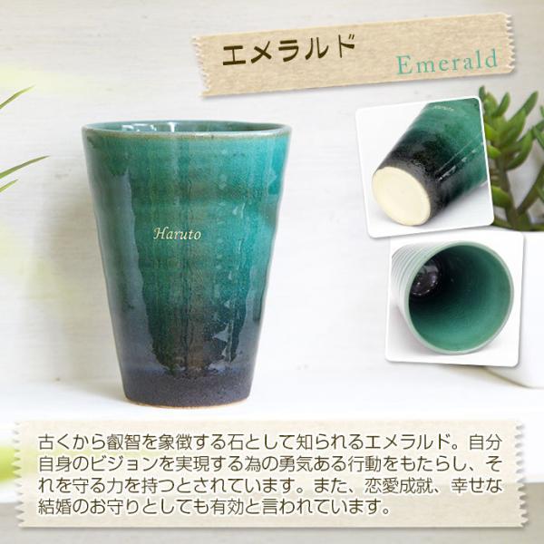 カップ タンブラー グラス 名入れ 送料無料 プレゼント ギフト 信楽焼 Jewel Cup ハーモニー karin-e 07