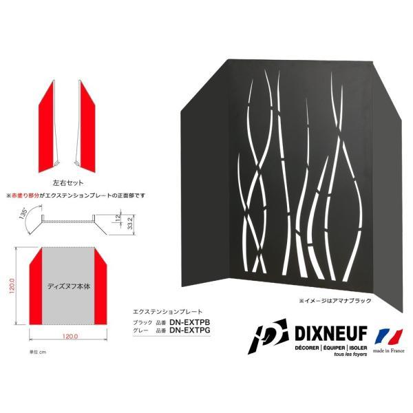 薪ストーブ用 DIXNEUF(ディズヌフ) ウォールプロテクターセット ビッグバングレー(DN10375G DN-EXTPG)