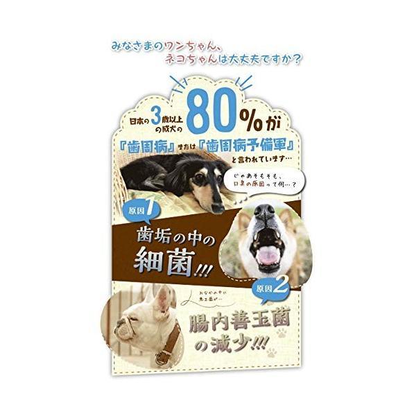 (ラブリービー) LovelyB 公式 愛犬 愛猫 口臭 歯周病 歯槽膿漏 ご飯にかけるだけ 口臭対策 口臭ケア 口腔ケア 腸内ケア 虫歯 予防 歯磨|kashii-firm|05