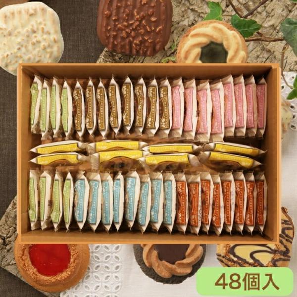ロシアケーキ お徳用 パック 48個入 ( 6種 の 詰め合わせ ) / 送料無料 焼き菓子 中元 ギフト クッキー タルト ポイント 消化|kashikobo