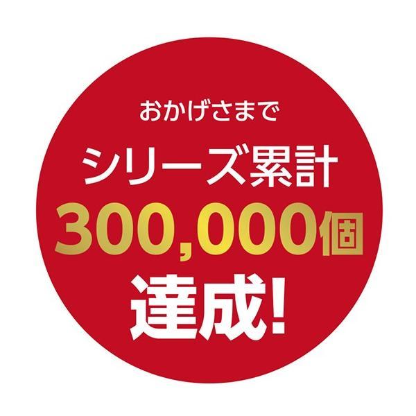 生カステラmini(プレーン) 【カステラ・冷凍配送】 kashuen-moricho 03