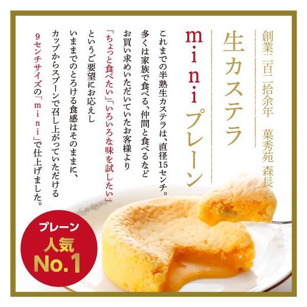 生カステラmini(プレーン) 【カステラ・冷凍配送】 kashuen-moricho 04
