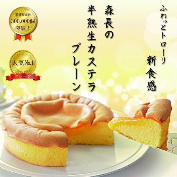 半熟生カステラ プレーン コラーゲン配合 冷凍配送|kashuen-moricho|02