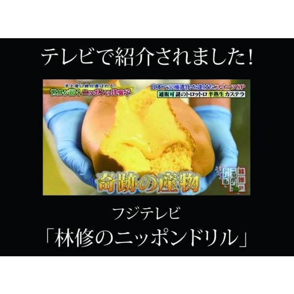 半熟生カステラ プレーン コラーゲン配合 冷凍配送|kashuen-moricho|03