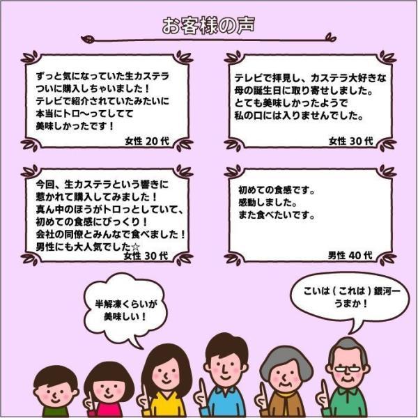 半熟生カステラ プレーン コラーゲン配合 冷凍配送|kashuen-moricho|04