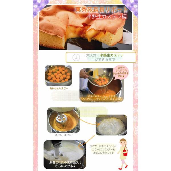 半熟生カステラ プレーン コラーゲン配合 冷凍配送|kashuen-moricho|05
