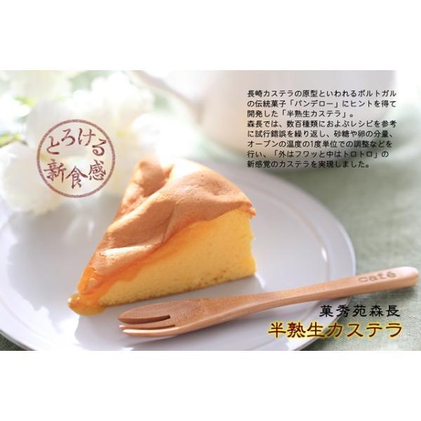 半熟生カステラ プレーン コラーゲン配合 冷凍配送|kashuen-moricho|07
