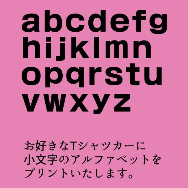 アルファベット 英語 数字 tシャツ おもしろ グッズ 雑貨 S M L XL プリント メンズ レディース 衣装 おもしろ雑貨 おもしろtシャツ イニシャル|kasou|03