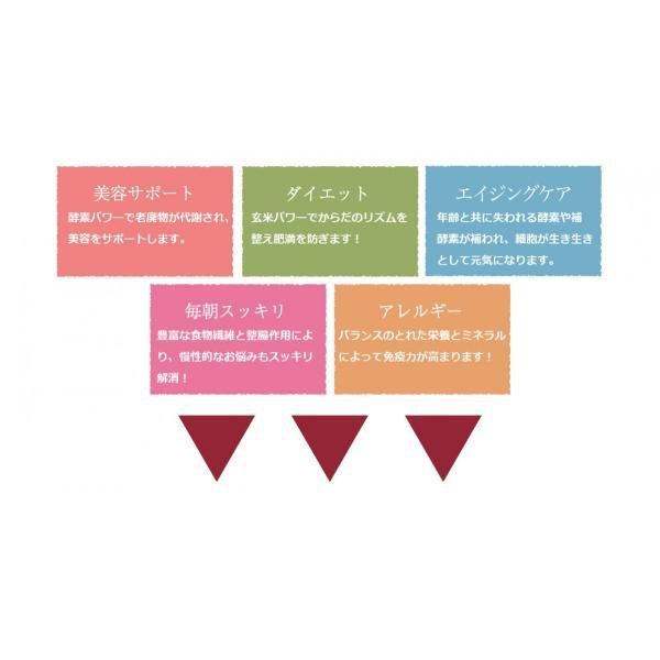超高圧・酵素玄米炊飯器 酵素玄米プロ2 kasurinishida 04