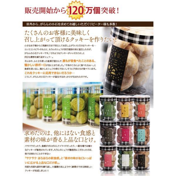 がらんの小石クッキー 16粒 個包装 アラカルト 詰め合わせ 卵不使用 サクサクほろろ 一口サイズ  ギフト クッキー プチギフト プレゼント kasyou-morin 04