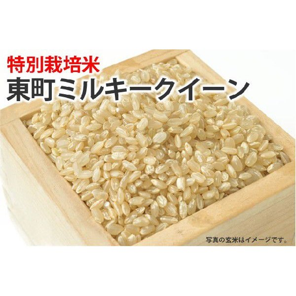 特別栽培米・東町ミルキークイーン【玄米】1kg