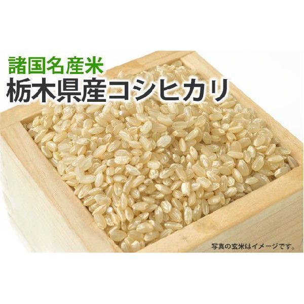 栃木県産コシヒカリ【玄米】1kg