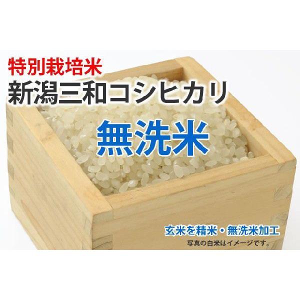 令和3年産新米・特別栽培米・新潟三和コシヒカリ【玄米1kgを精米・無洗米加工】