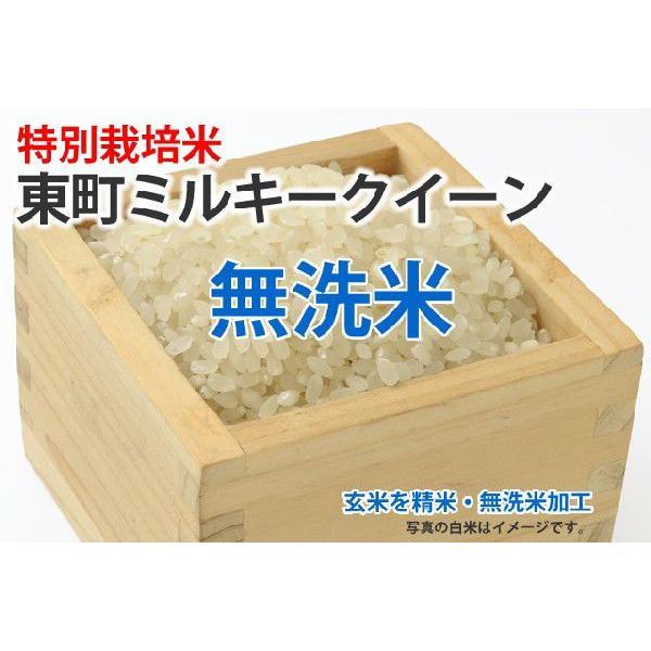 令和3年産新米・特別栽培米・東町ミルキークイーン【玄米1kgを精米・無洗米加工】