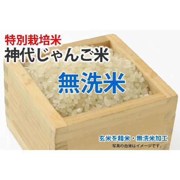 神代じゃんご米【玄米1kgを精米・無洗米加工】