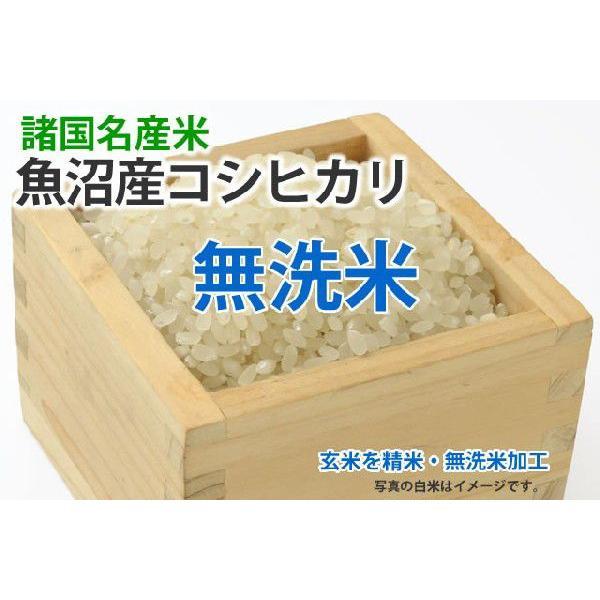 令和3年産新米・特別栽培米・魚沼産コシヒカリ【玄米1kgを精米・無洗米加工】