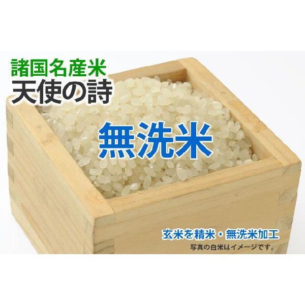 天使の詩【玄米1kgを精米・無洗米加工】