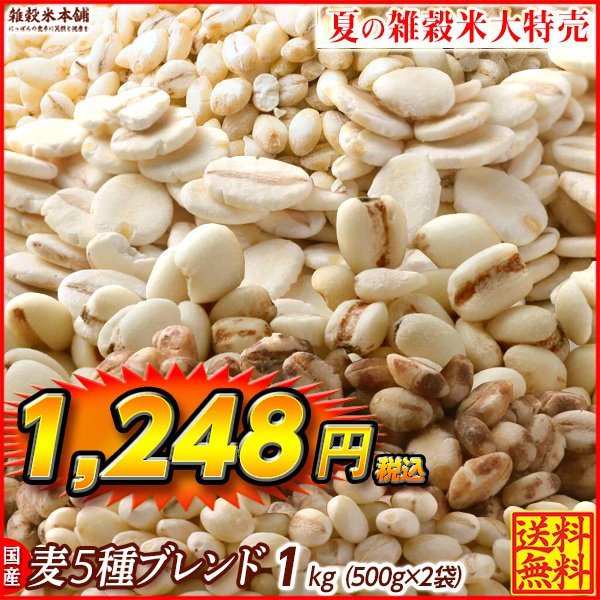 雑穀 麦 国産 麦5種ブレンド(丸麦/胚芽押麦/はだか麦/もち麦/はと麦) 1kg(500g×2袋) 送料無料 ダイエット食品 置き換えダイエット 雑穀米本舗|katochanhonpo