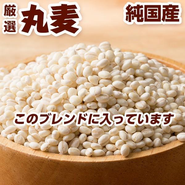 絶品夏休み大特価 麦5種ブレンド 1kg (500g x 2袋) 人気サイズ 厳選国産 [丸麦 胚芽押麦 はだか麦 もち麦 はと麦]  人気サイズ|katochanhonpo|02
