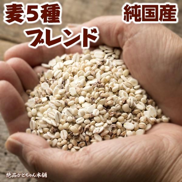 雑穀 麦 国産 麦5種ブレンド(丸麦/胚芽押麦/はだか麦/もち麦/はと麦) 1kg(500g×2袋) 送料無料 ダイエット食品 置き換えダイエット 雑穀米本舗|katochanhonpo|07