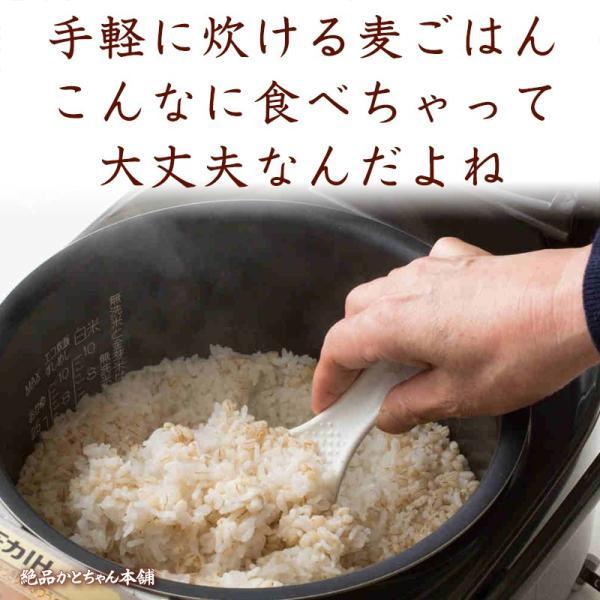 絶品夏休み大特価 麦5種ブレンド 1kg (500g x 2袋) 人気サイズ 厳選国産 [丸麦 胚芽押麦 はだか麦 もち麦 はと麦]  人気サイズ|katochanhonpo|07