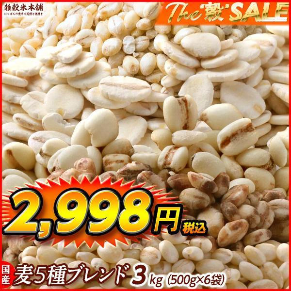 米 雑穀 麦 国産 麦5種ブレンド(丸麦/押麦/はだか麦/もち麦/はと麦) 3kg(500g x6袋) 送料無料 雑穀米本舗|katochanhonpo