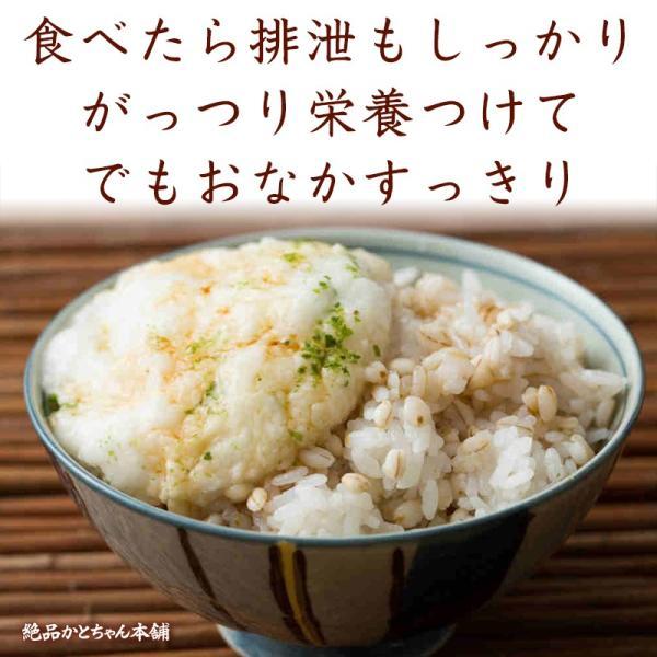 米 雑穀 麦 国産 麦5種ブレンド(丸麦/押麦/はだか麦/もち麦/はと麦) 3kg(500g x6袋) 送料無料 雑穀米本舗|katochanhonpo|12