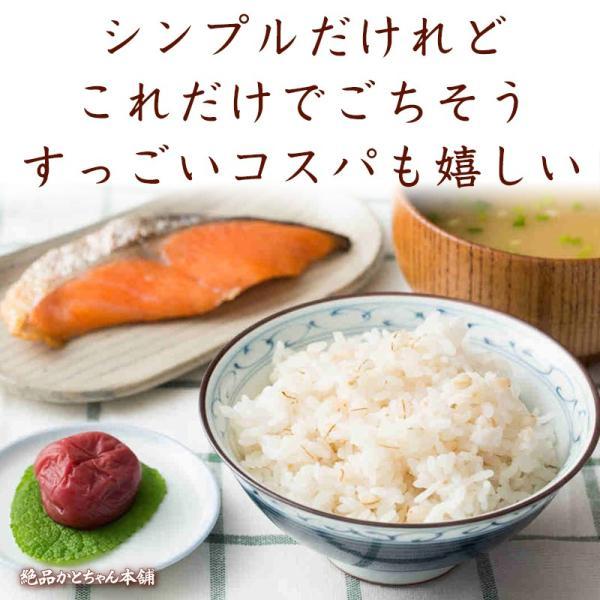 米 雑穀 麦 国産 麦5種ブレンド(丸麦/押麦/はだか麦/もち麦/はと麦) 3kg(500g x6袋) 送料無料 雑穀米本舗|katochanhonpo|13