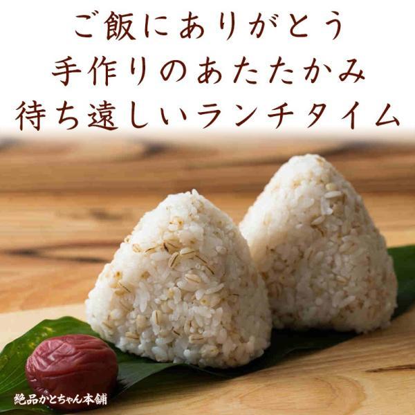 米 雑穀 麦 国産 麦5種ブレンド(丸麦/押麦/はだか麦/もち麦/はと麦) 500g 送料無料 雑穀米本舗 katochanhonpo 10