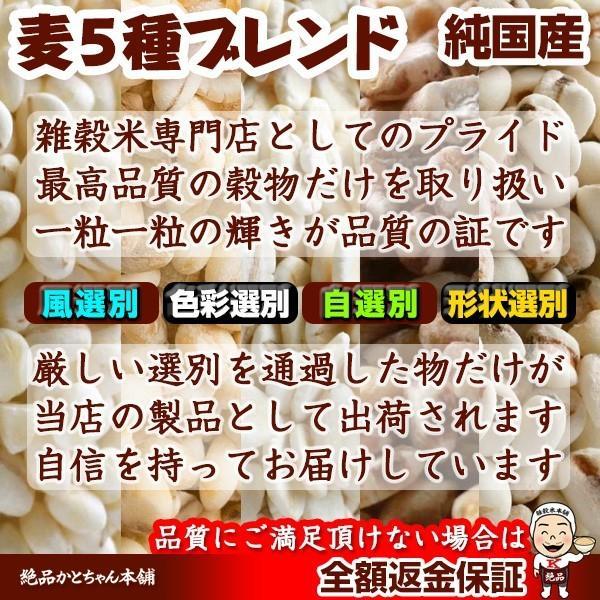 米 雑穀 麦 国産 麦5種ブレンド(丸麦/押麦/裸麦/もち麦/はと麦) 5kg(500g x10袋) 送料無料 雑穀米本舗|katochanhonpo|14