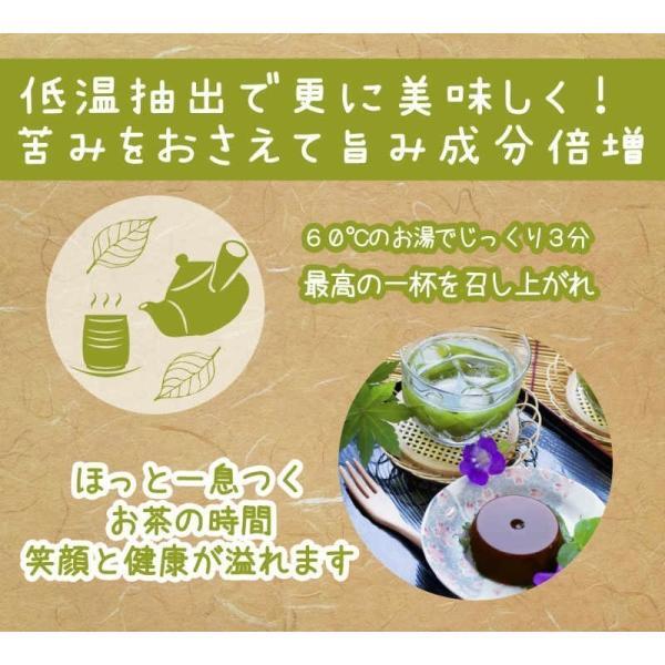 お茶 茶葉 日本茶 深むし茶 100g x10袋セット 送料無料 お茶の王国 静岡から 苦みの中に甘み お茶 日本茶 雑穀米本舗|katochanhonpo|11