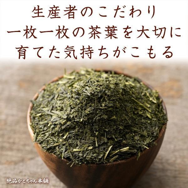 お茶 茶葉 日本茶 深むし茶 100g x3袋セット 送料無料 お茶の王国 静岡から 苦みの中に甘み お茶 日本茶 雑穀米本舗|katochanhonpo|13